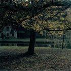 Herbststimmung im Dorf der Königin