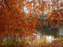 Herbststimmung im Pücklerpark Bad Muskau