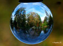 Herbststimmung im Stadtgarten Neuss - am Teich