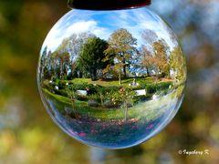 Herbststimmung im Stadtgarten Neuss - im Rosengarten