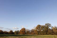 Herbststimmung in der Muldeaue - Bild 4