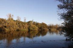 Herbststimmung in der Muldeaue - Bild 5