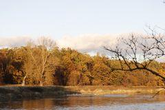 Herbststimmung in der Muldeaue - Bild 9