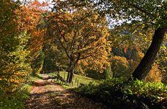 Herbststimmung in der Steiermark!