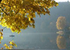 Herbststimmung m Bäumen und Angler (Lister-Talsperre)
