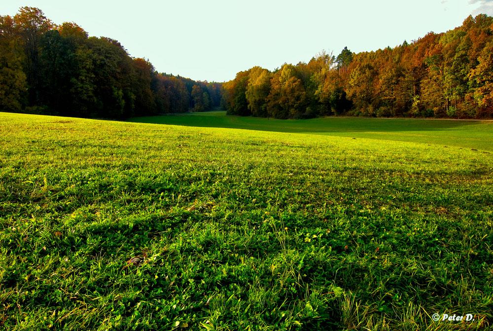 Herbststimmungen (4)