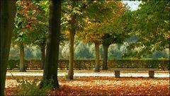 Herbststimmung/Schloßpark