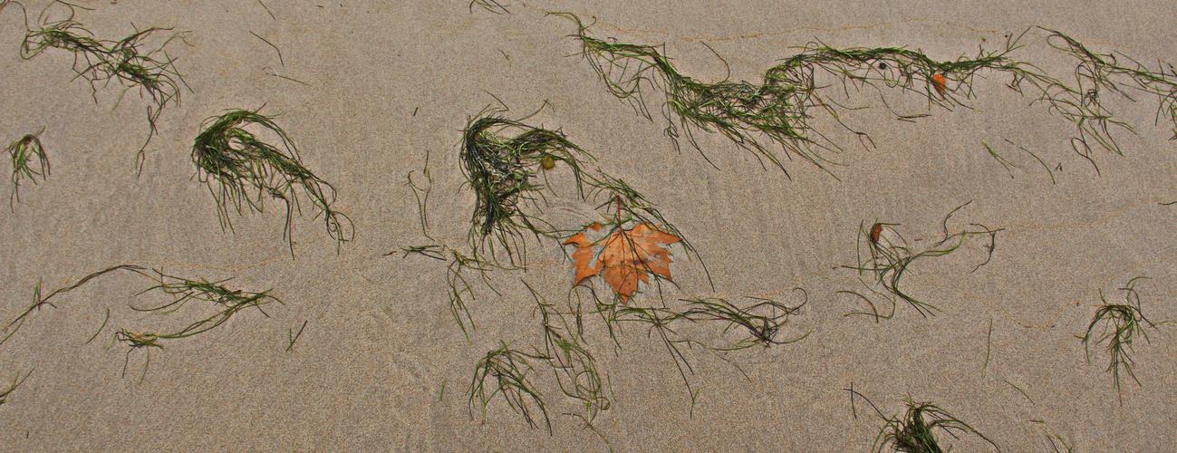 Herbststrand