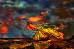Herbstsymphonie