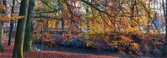 Herbsttag an der Hunte