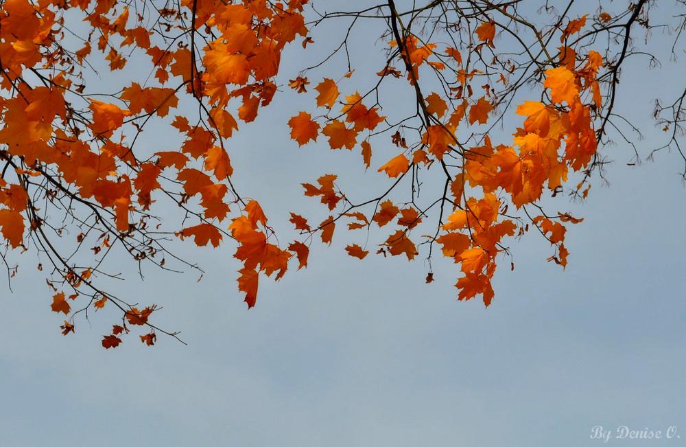 Herbsttag
