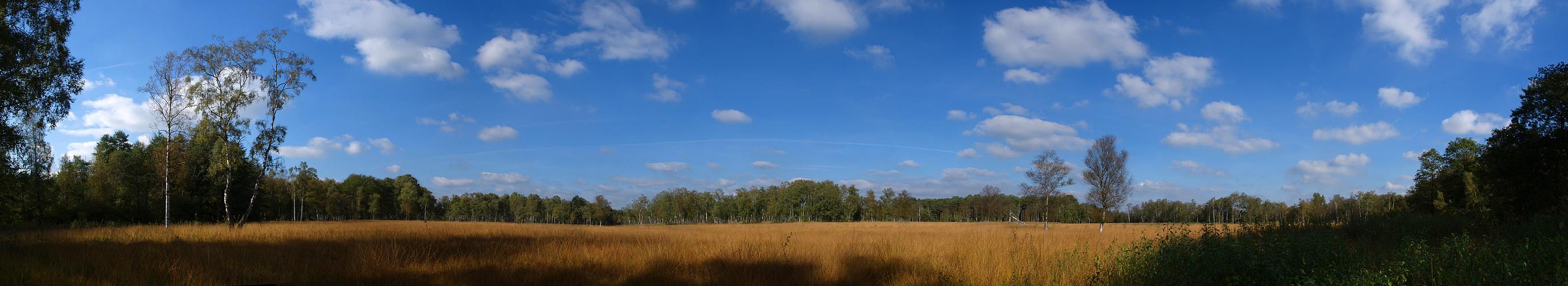Herbsttag im Duvenstedter Brook