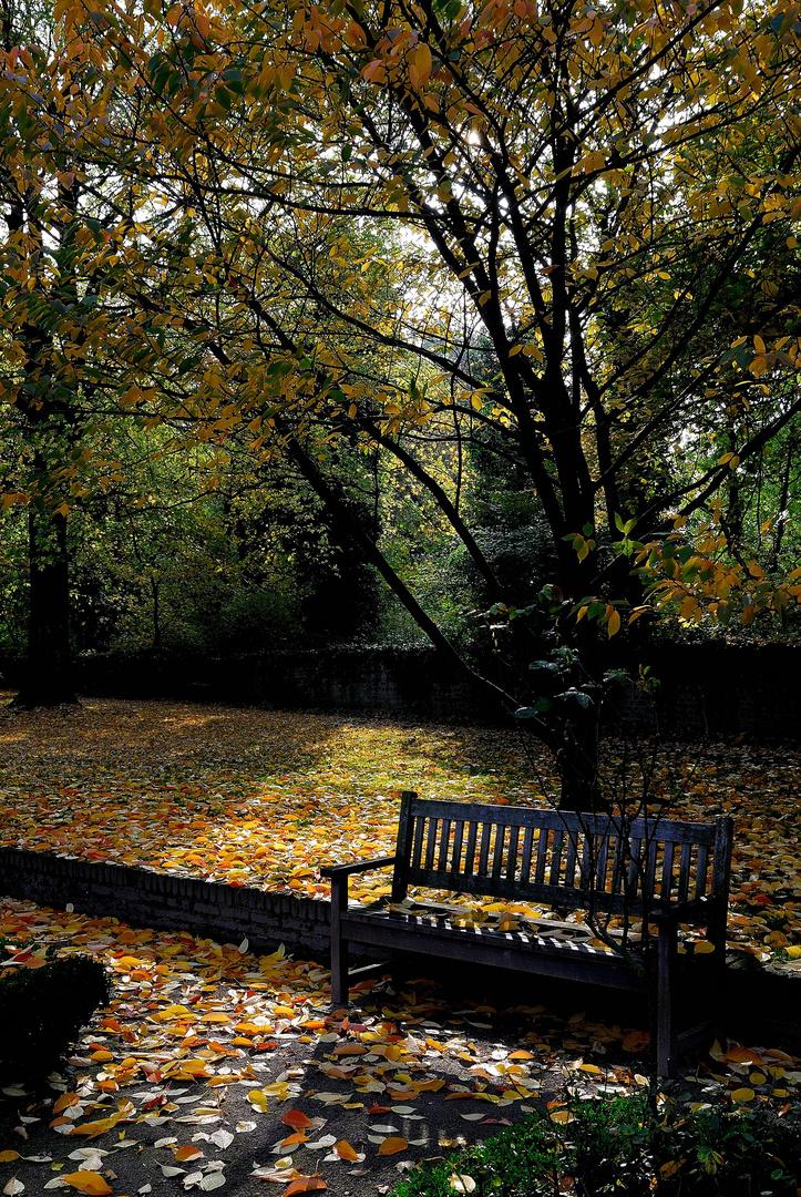 Herbsttag im Stadtgarten