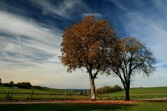 Herbsttag Original