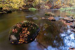 Herbsttage_0810