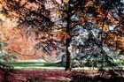 Herbsttöne