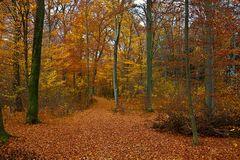 Herbsttor