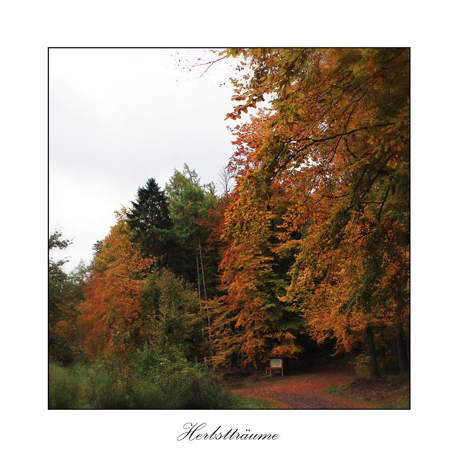Herbstträume