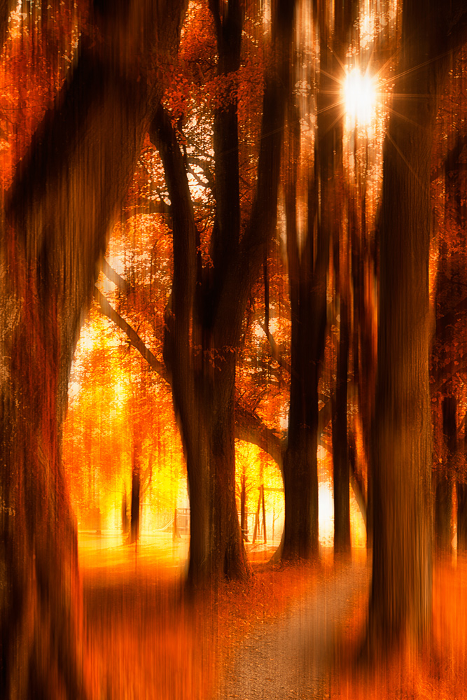 Herbsttraum