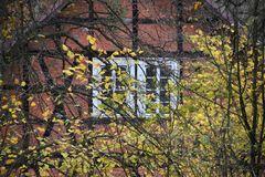 Herbstversteck
