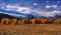 Herbstwald gegen Teton Range, Wyoming, USA
