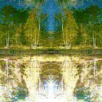 Herbstwald-Spiegelung...... + gespiegelt....