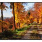 Herbstwanderung bei Reichental im Nordschwarzwald