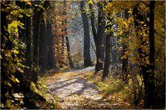 Herbstweg