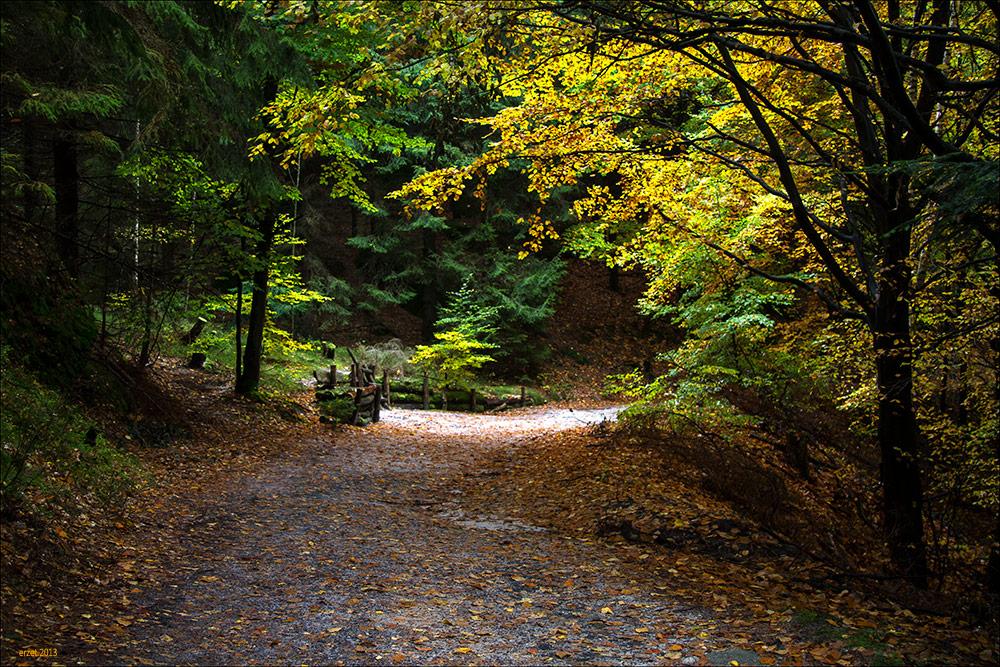 Herbstweg...