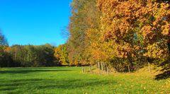 Herbstwege (1)
