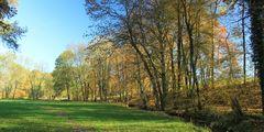 Herbstwege (3)