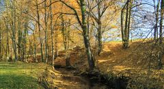 Herbstwege (4)