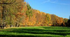 Herbstwege (5)