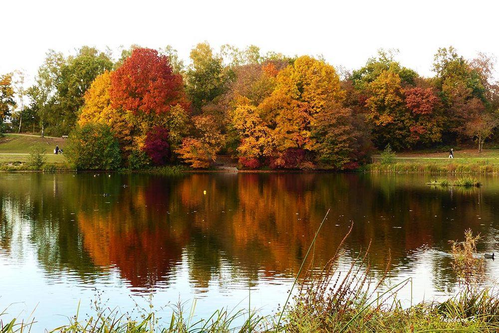 Herbstzauber am Jrönen Märken in Neuss