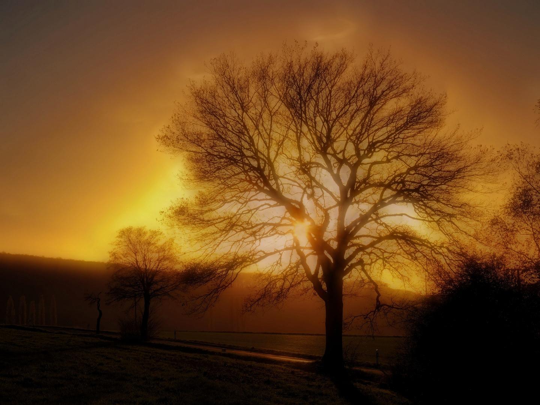 Herbstzauber........