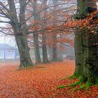 Herbstzauber im Kurpark Tabarz/Thüringen