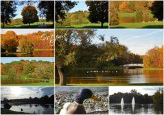 Herbstzauber im Ostpark
