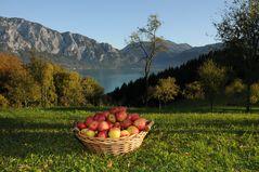 Herbstzeit.....