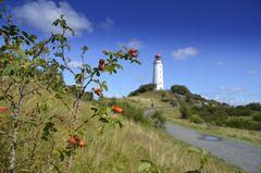 Herbstzeit auf Hiddensee