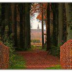 Herbstzeit; Mit Blick auf den Berg