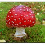 Herbstzeit .... Pilzzeit