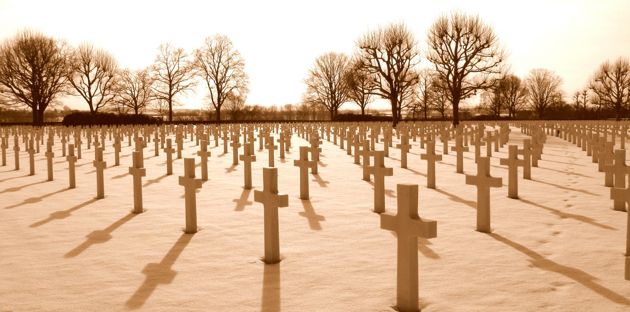 Heros/ Fallen But Not Forgotten