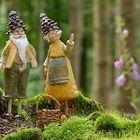 Herr und Frau Zapfe auf Pilzsuche