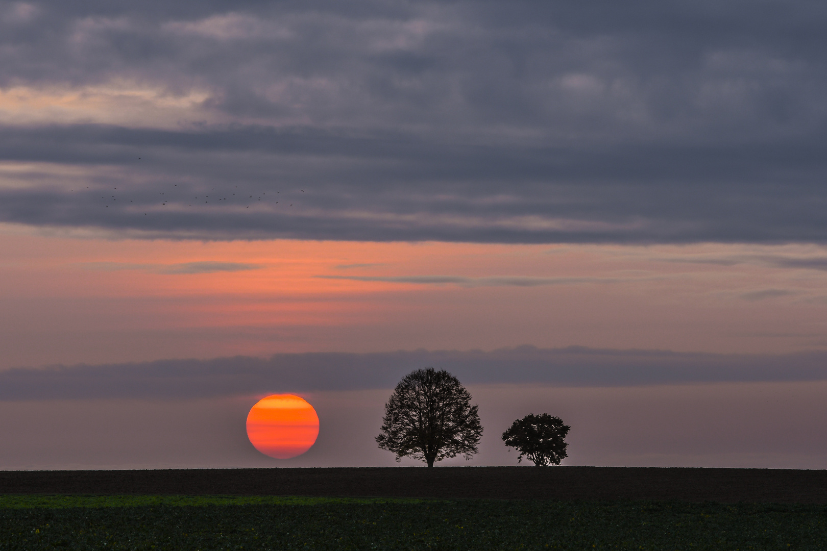 Herrlicher Sonnenuntergang....