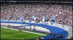 Hertha BSC vs VFL Bochum 4