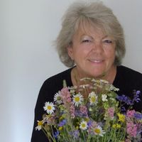 Hertha Götz