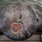 Herz am rechten Fleck