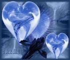 Herz Blend
