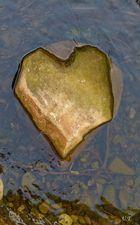 Herz gefunden # 4