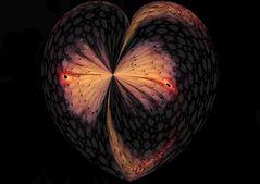 Herz in Flammen